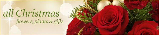 Christmas Flowers By Royal Fleur Florist