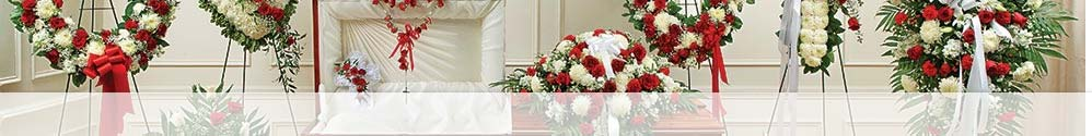 Red and White Sympathy Flowers Collection