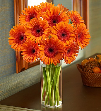 Fall Gerbera Daisy Bouquet Orange Gerbera Daisy B...