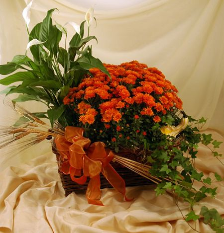 Fall Flowering Planter - Click Image to Close
