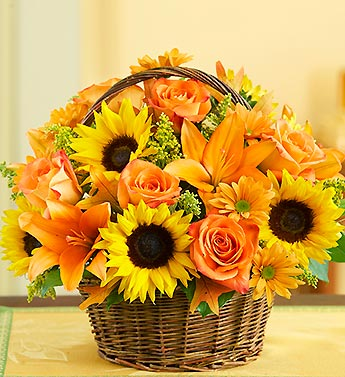 Field of Europe For Fall Basket