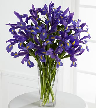Iris Riches Bouquet - Click Image to Close