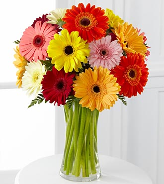 Colorful World Gerbera Daisy Bouquet - Click Image to Close