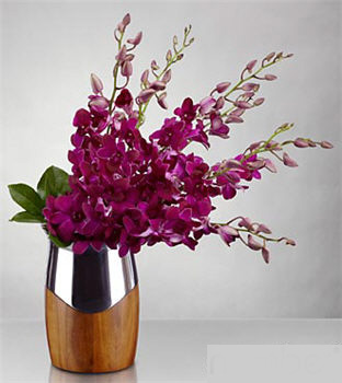 New Perspectives Orchid Bouquet - Click Image to Close
