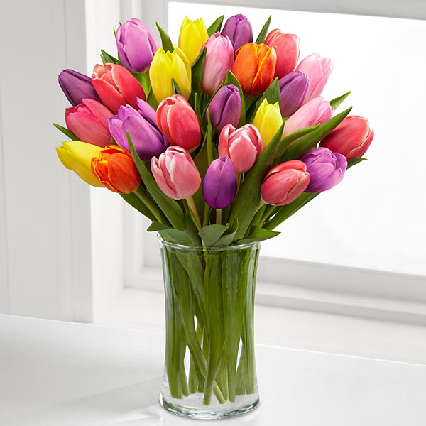 Rush of Color Assorted Tulip Bouquet - 20 assorted Tulips