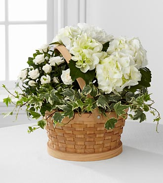 Whispers of Peace Sympathy Basket - Click Image to Close