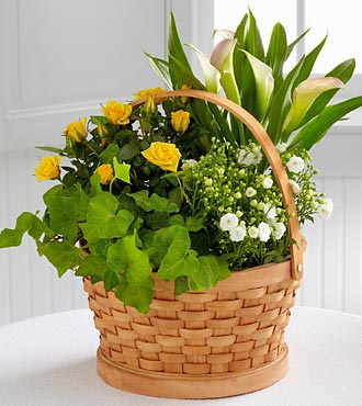 Cheerful Wishes Blooming Basket - Click Image to Close