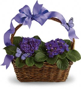 Violets And Butterflies Bouquet