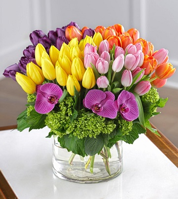 Tulip Frenzy Bouquet