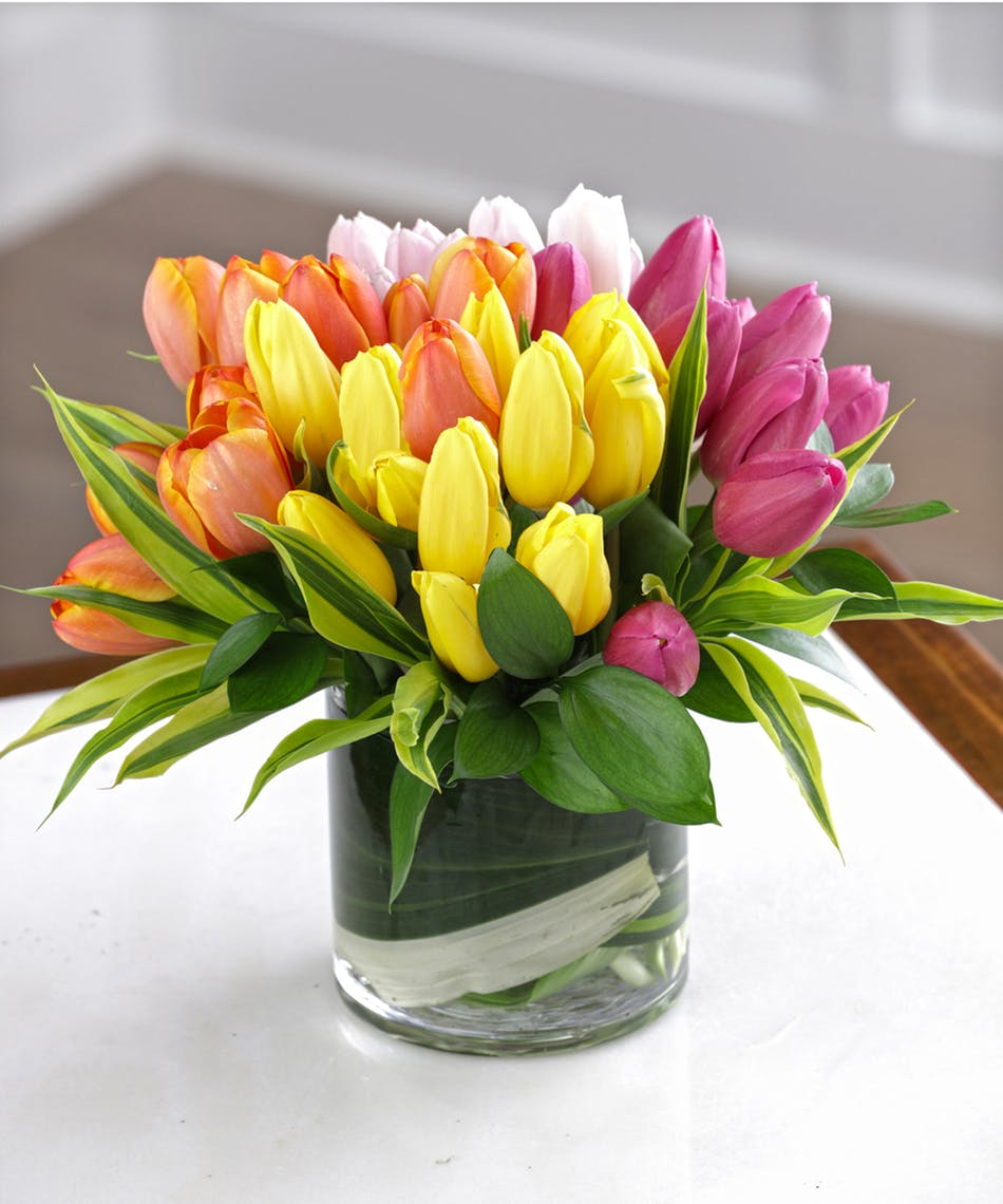A Mixed Tulip Rainbow Bouquet - 40 Tulips