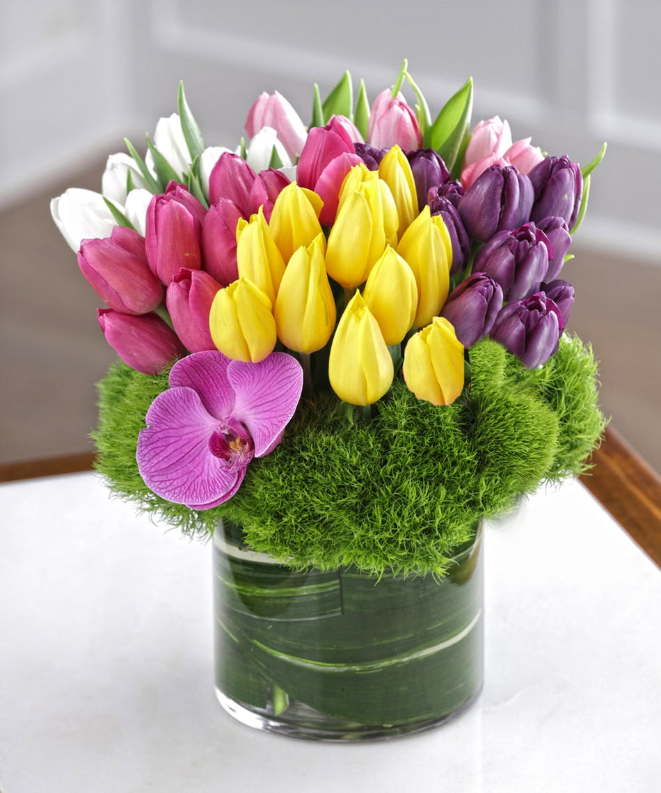 Absolute Tulip Bouquet- 50 Tulips