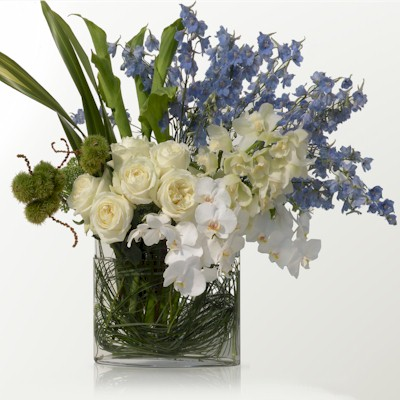 The Blue And White Arrangement - Click Image to Close