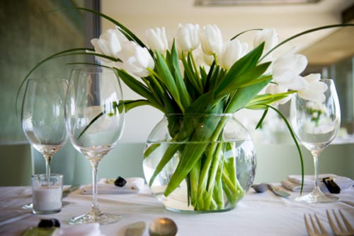 The White Tulip Elegance ( 20 tulips )