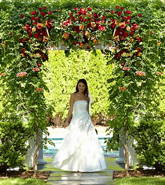 The Arbor Of Love Archway - Click Image to Close